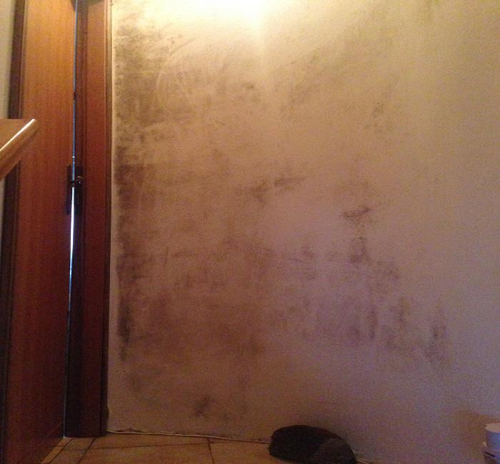 Aggressione della muffa nella parete del vano scala